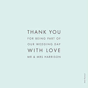 Modern light green blue wedding thank you cards