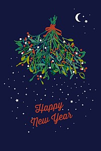 Christmas Cards Under the mistletoe blue