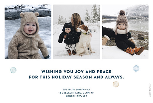 Christmas Cards Festive ferns 3 photos blue - Page 2