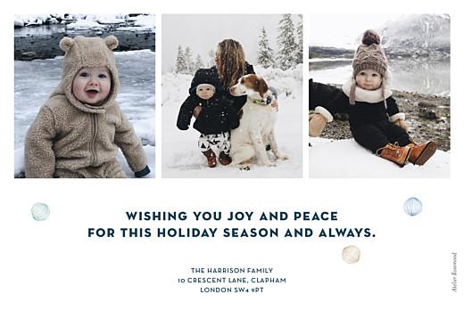 Christmas Cards Festive ferns 3 photos (foil) blue - Page 2