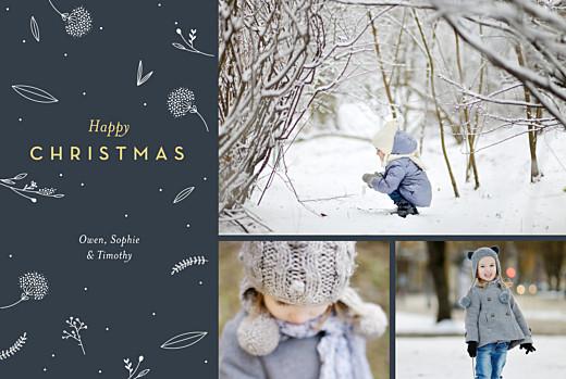 Christmas Cards Festive foliage 3 photos blue