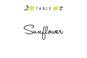 Table Numbers Palermo white