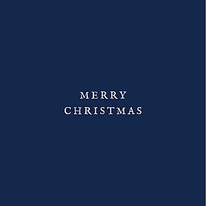 Constellations (foil) navy blue foil christmas cards