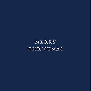 Constellations (foil) navy blue silver foil christmas cards