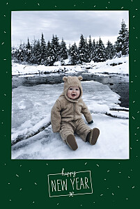 Christmas Cards Winter confetti (4 pages) green