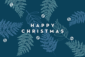 Festive ferns (foil) blue foil christmas cards