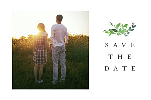 Canopy green save the date cards