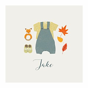 Autumn baby (4 pages) blue gray boys baby announcements
