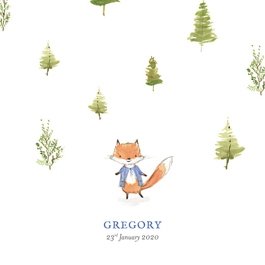Baby Announcements Watercolour fox photo (4 pages) blue