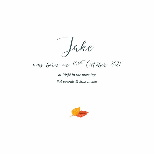Baby Announcements Autumn baby (4 pages) blue gray - Page 3
