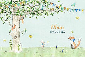 Baby Announcements Woodland storybook photo blue