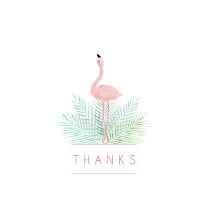 Pink flamingo white without photos baby thank you cards