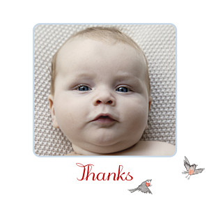 Winter storybook blue red baby thank you cards