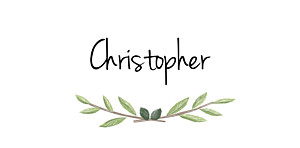 Christening Place Cards Olive branch white