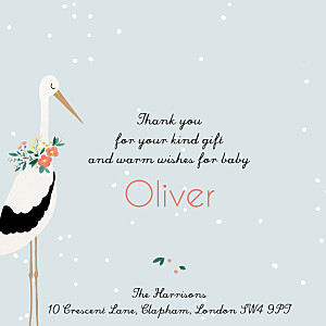 Stork orange orange baby thank you cards