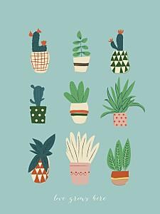 Cacti cactus blue posters