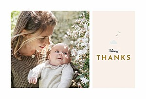 Charming chapel pink baby thank you cards