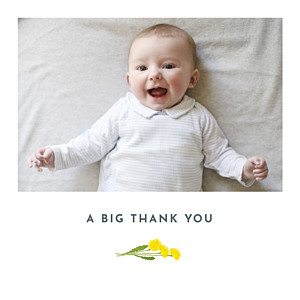 Summer baby blue baby thank you cards