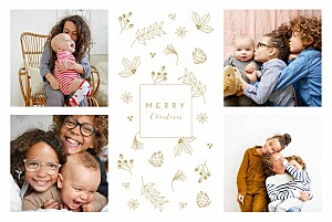 My winter garden sand le collectif  christmas cards