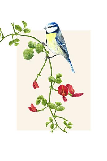 RSVP Cards Flora & fauna white