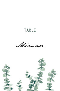Eucalyptus white table numbers