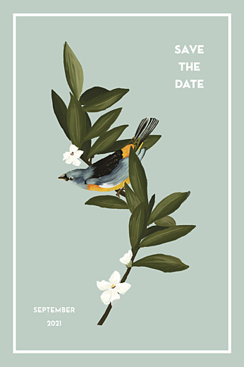 Save The Date Cards The botanist blue