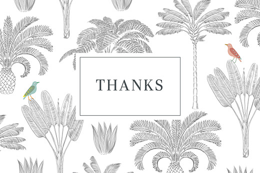 Baby Thank You Cards Birds of paradise white