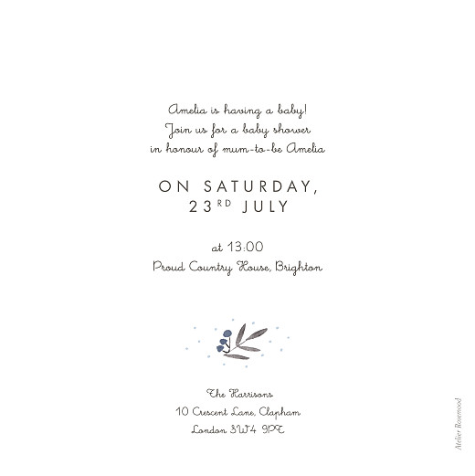Baby Shower Invitations Jubilation blue - Page 2