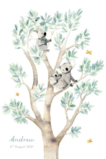 Baby Announcements Koala family of 3 white