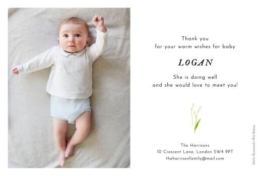 Baby Thank You Cards Petit bateau x rosemood (stripes) orange - Page 2