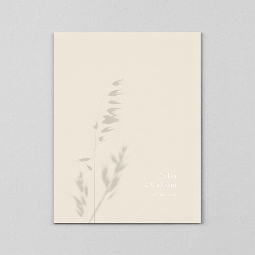 海岸梦(牛皮纸)小穗-视图2