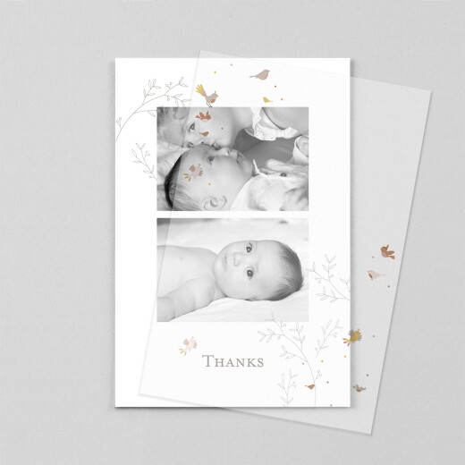 Baby Thank You Cards Birds of a feather (vellum) pink - View 1