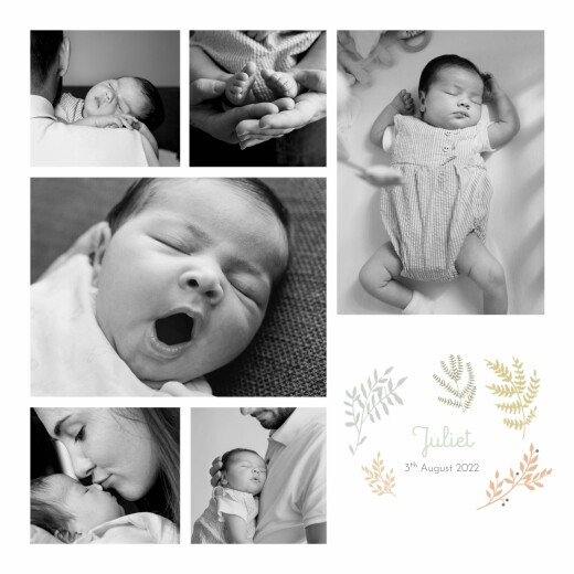 Baby Announcements Liberty leaves green