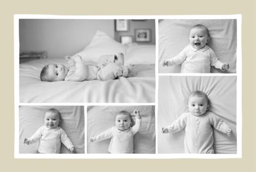 婴儿感谢卡的小狐狸米色 - 第2页