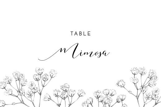 Wedding Table Numbers Gypsophila beige
