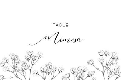 Wedding Table Numbers Gypsophila beige finition