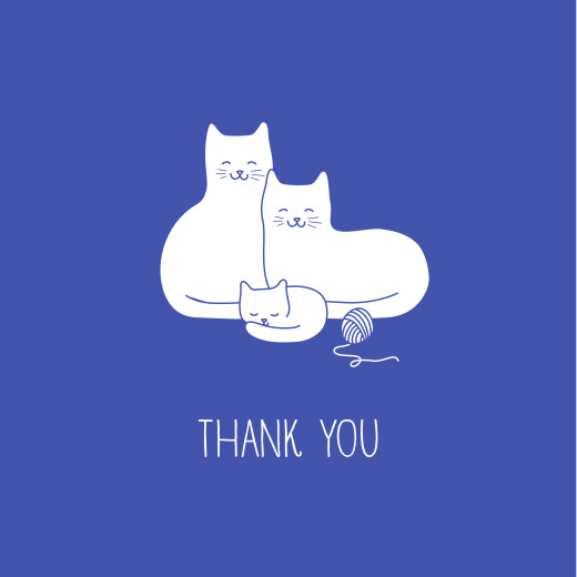 Baby Thank You Cards Cat family of 3 (4 pages) blue