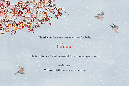 Baby Thank You Cards Winter storybook photo blue - Page 3